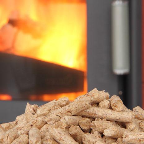 biomasse-heizung in delitzsch
